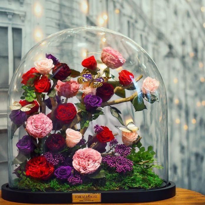 Заколдованные розы в стеклянном контейнере