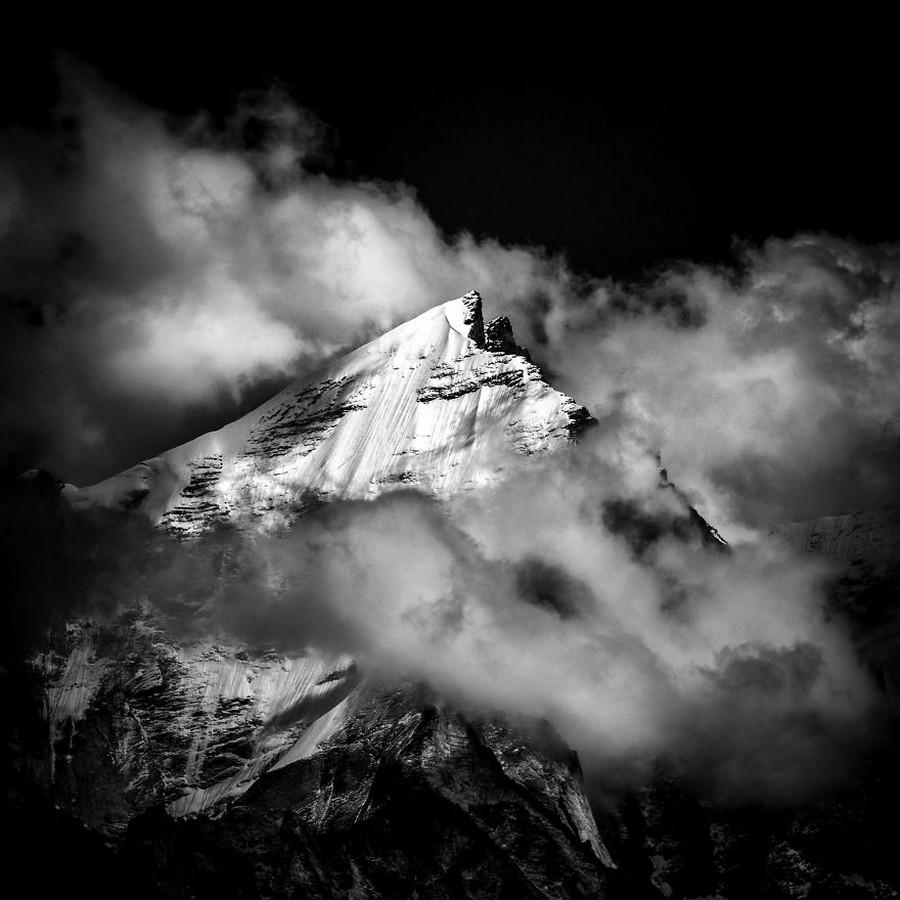 Поразительные снимки с конкурса Sony World Photography Awards 2017
