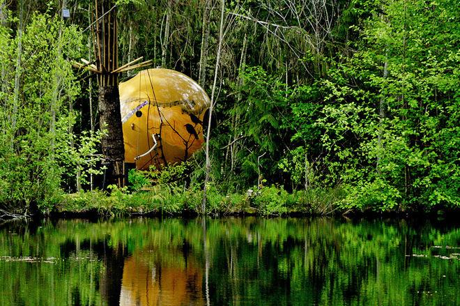 Оригинальный отель в лесу на дереве