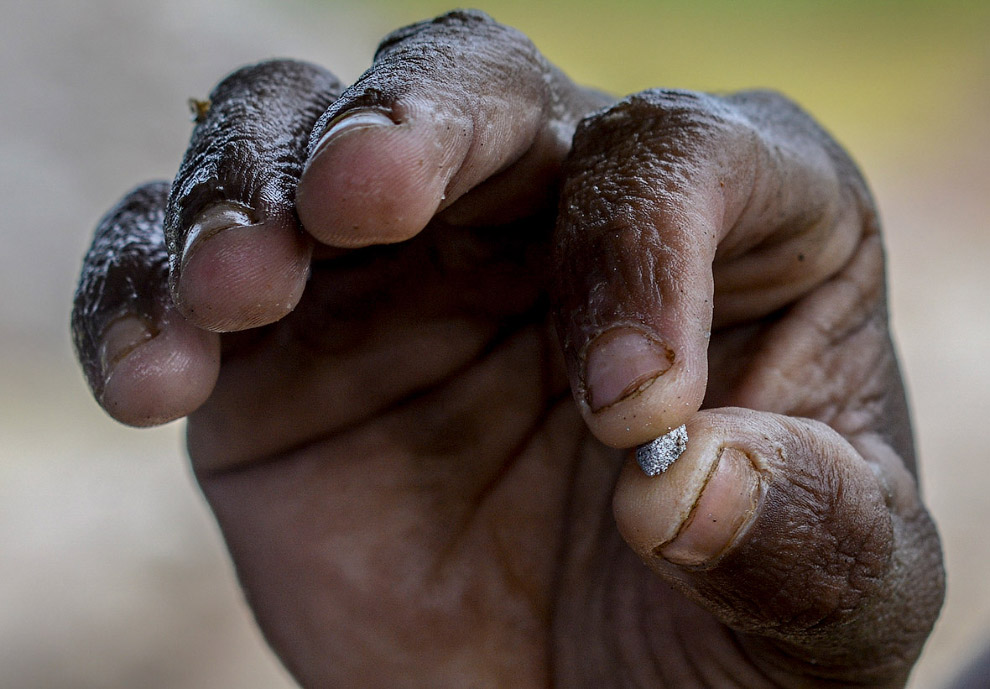 Незаконная добыча золота Венесуэлы