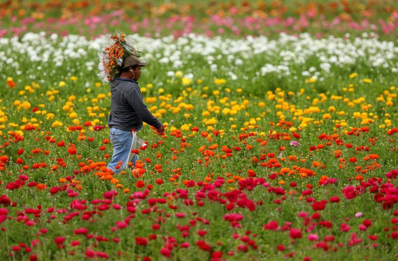 Весна окончательно вступила в свои права