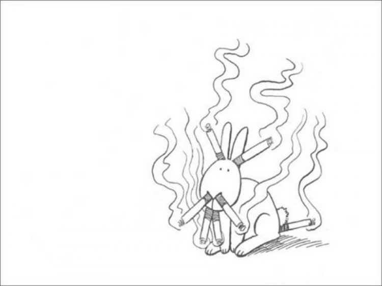 Зайчишка-самоубивашка