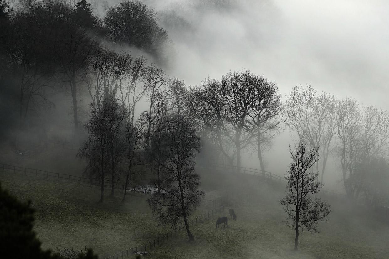 Потрясающие снимки туманов