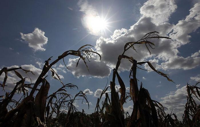 Засуха в Техасе