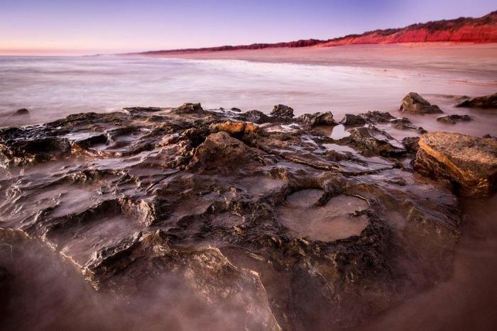 В Австралии обнаружили самый большой след динозавра