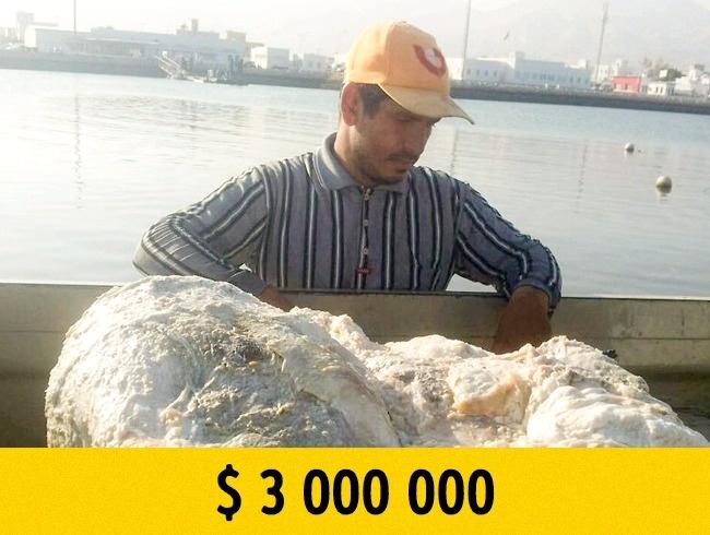 Когда бесполезный мусор обернулся миллионным состоянием