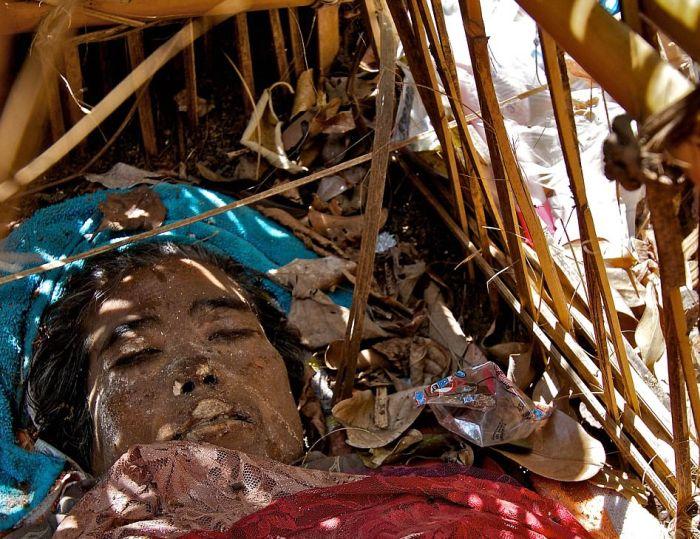 Необычный похоронный ритуал жителей деревни Труньян на Бали