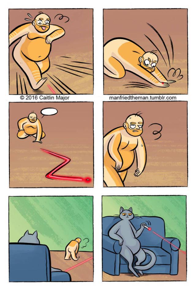 Если бы человек был домашним питомцем кота