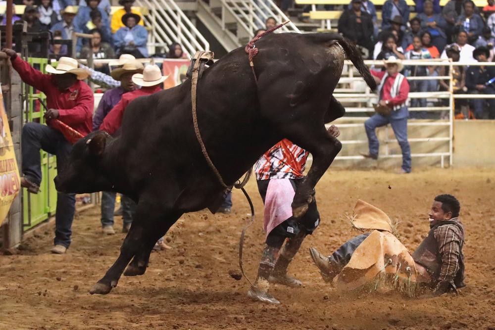 Соревнования чернокожих ковбоев
