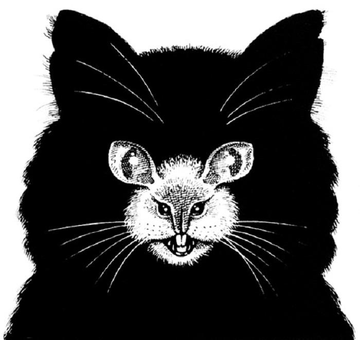 Оптические иллюзии, способные вызвать галлюцинации