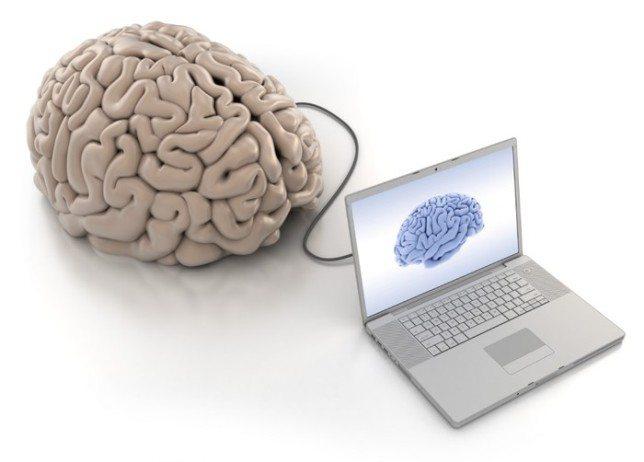 Малоизвестные факты о мозге