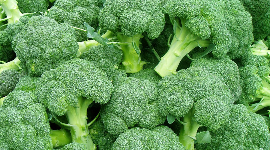 10 продуктов, значительно ускоряющих метаболизм