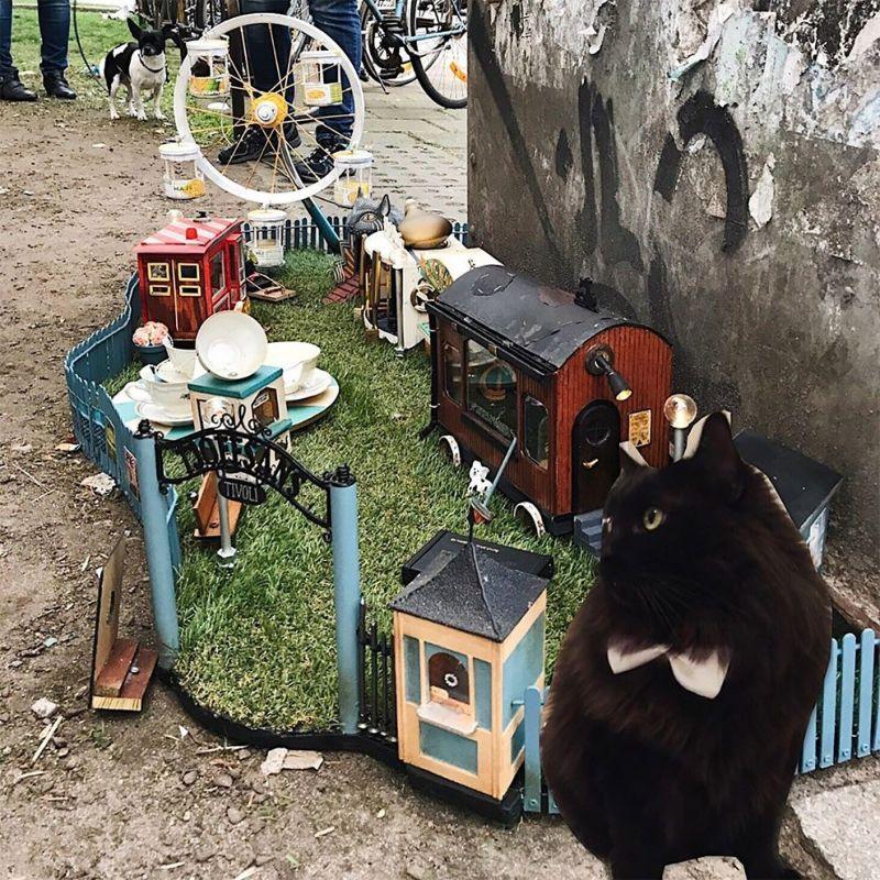 AnonyMouse создали парк развлечений для мышей