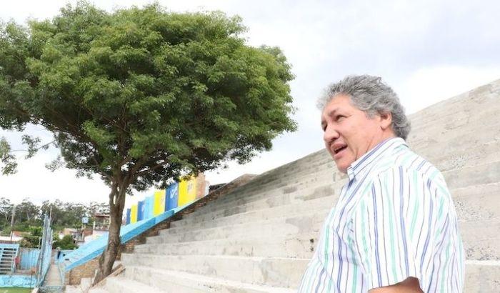 Трибуна вокруг дерева в Парагвае