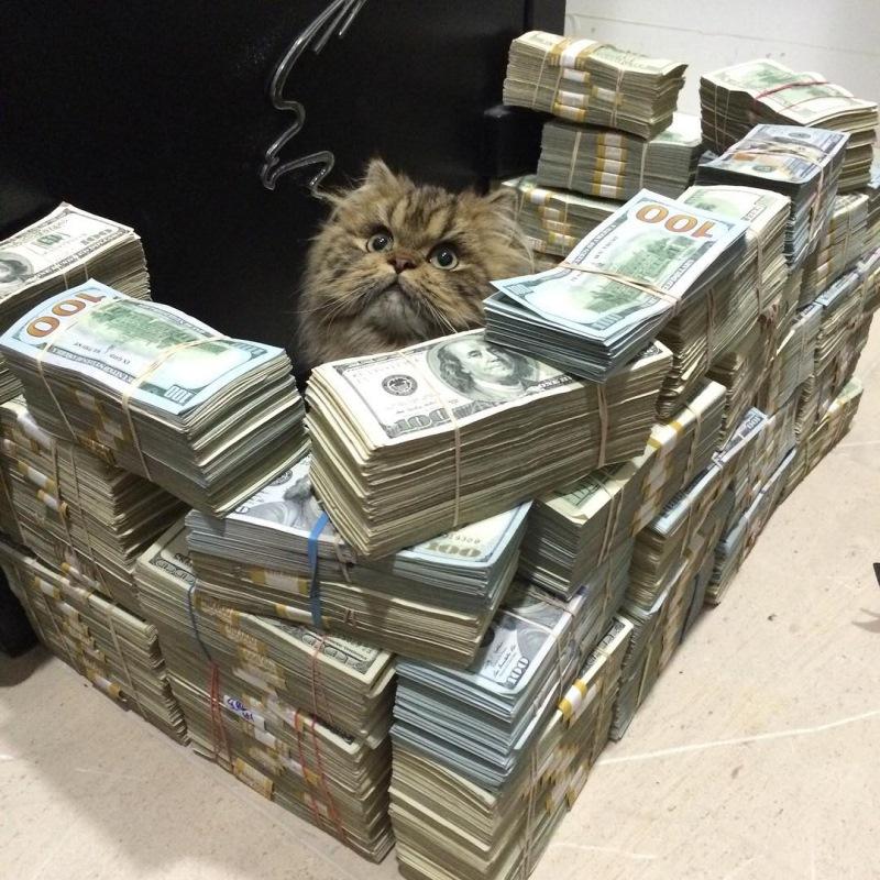Фото из жизни самого эксцентричного миллионера США