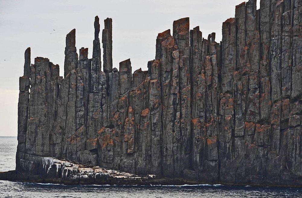 Удивительные долеритовые колонны на побережье Тасмании