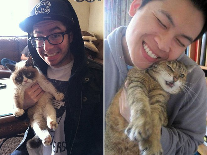 Кошки, которые не любят селфи