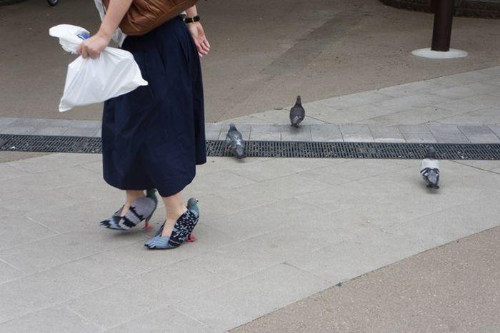 Туфли в виде голубей из Японии