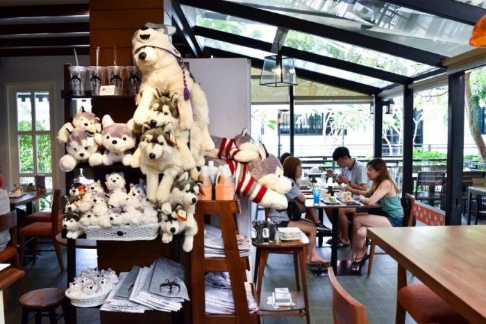 Кафе с хаски - достопримечательность Бангкока