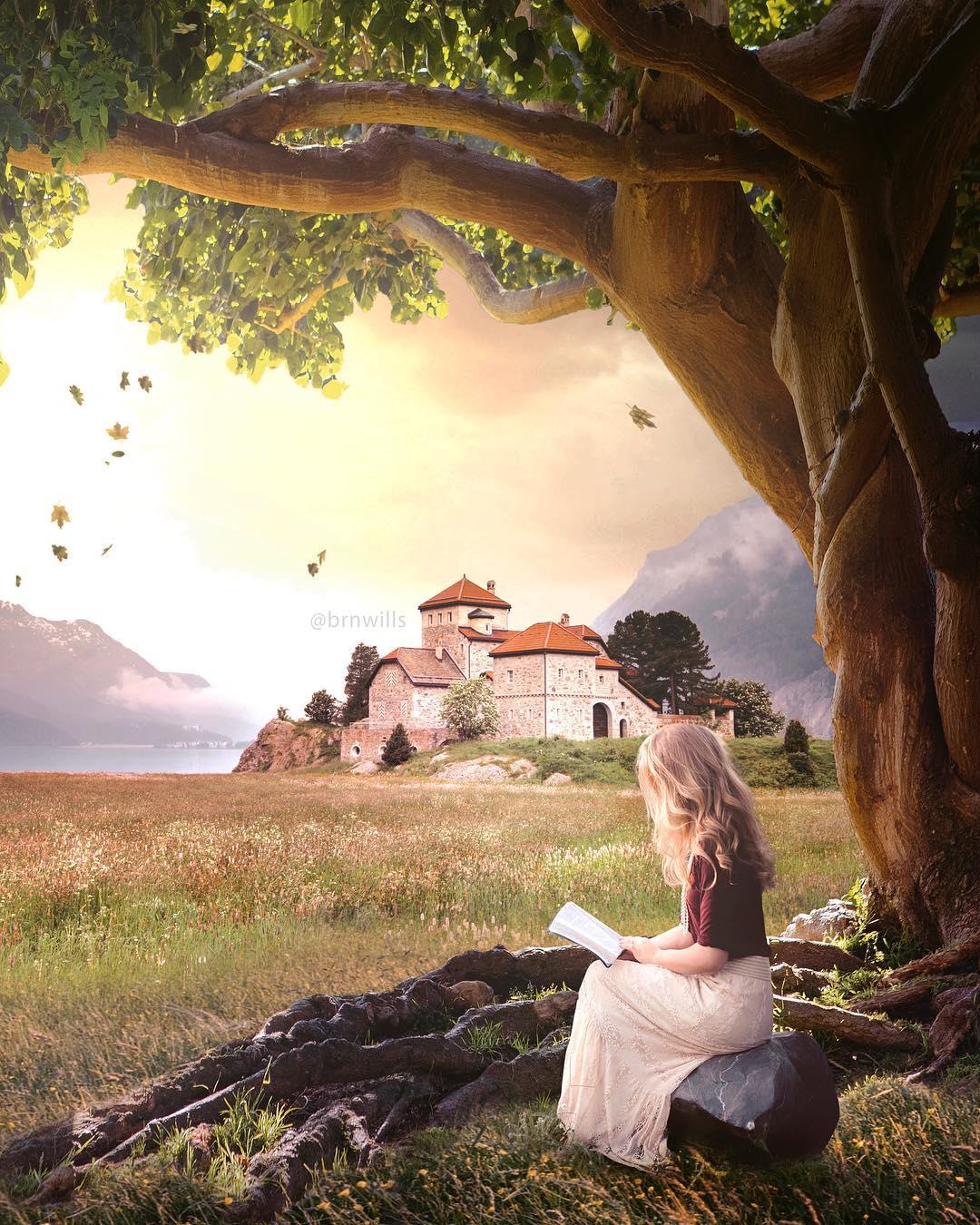 Сказочные пейзажи и приключения от Брендана Уильямса