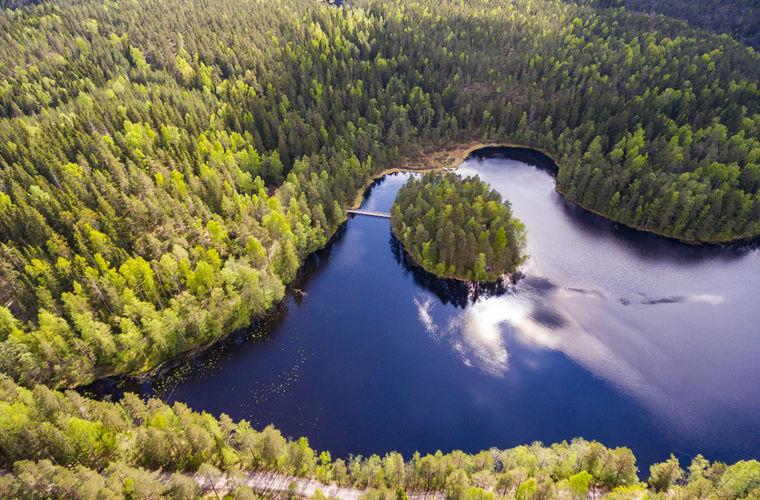 Что следует сделать в Финляндии
