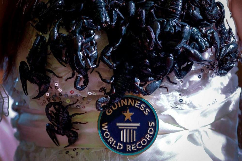 Королева скорпионов из Таиланда