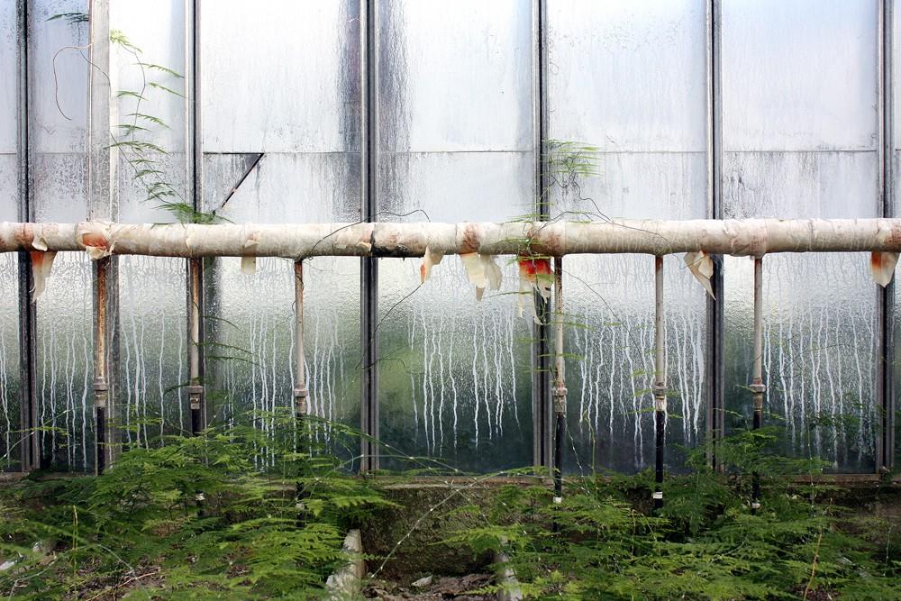 Заброшенные парники, теплицы и оранжереи
