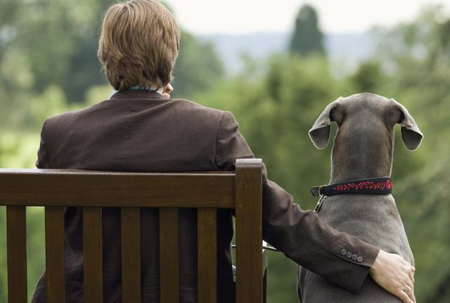Что наши собаки знают о нас