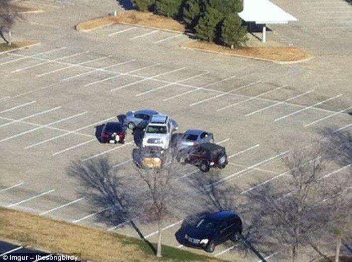 Гении парковки демонстрируют свои умения