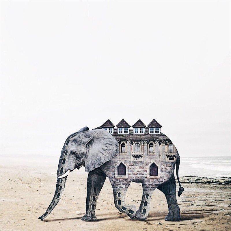 Сюрреалистичные композиции художницы из Португалии