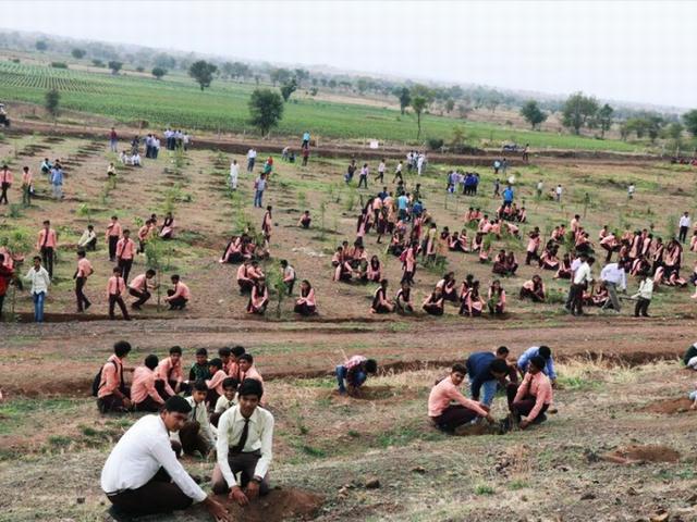 1,5 млн добровольцев посадили 66 млн деревьев за 12 часов
