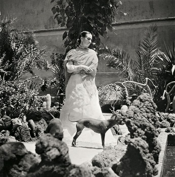 Последние месяцы мексиканской художницы Фриды Кало