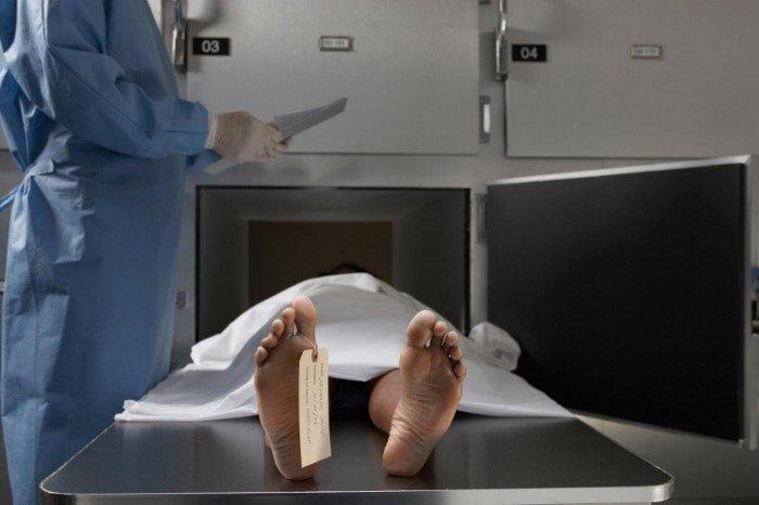 Шокирующие факты о человеческом теле