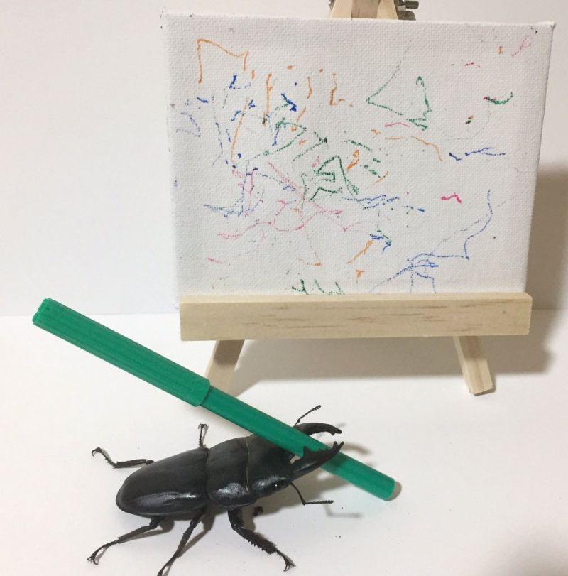 Картины жука продаются за приличные деньги