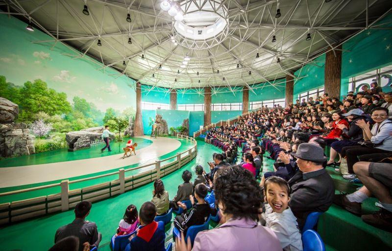 Увлекательный мир развлечений Северной Кореи