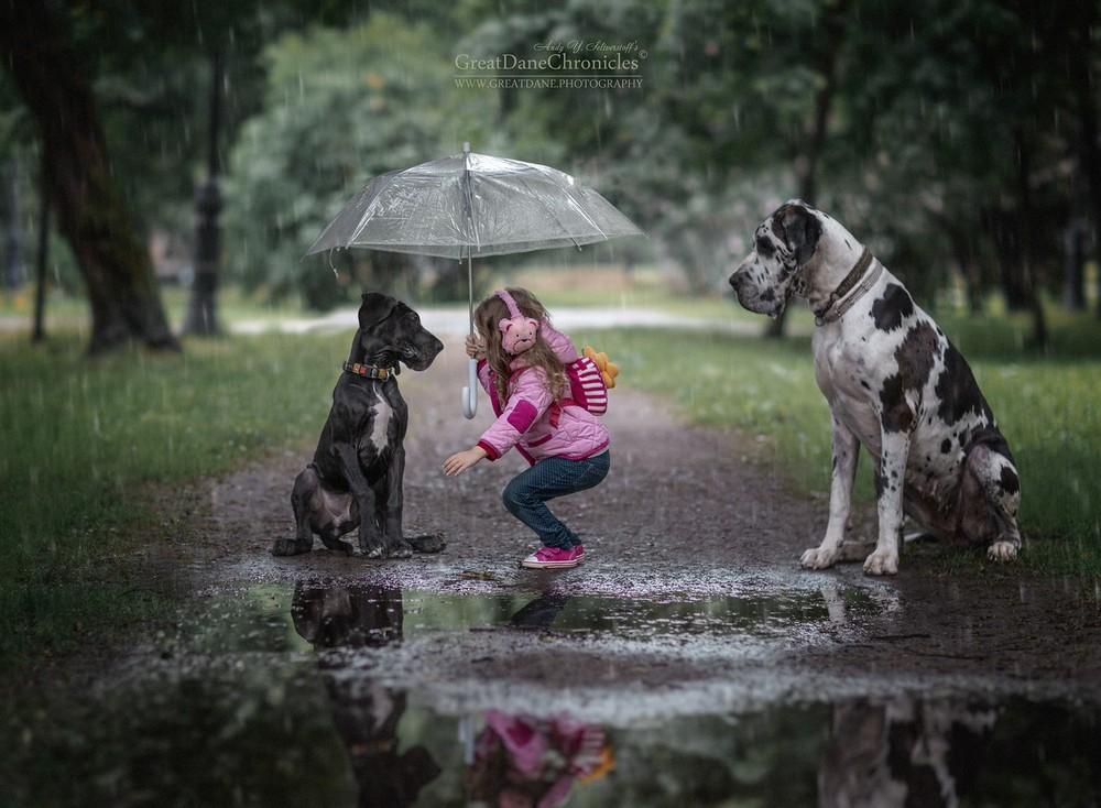 Очаровательные снимки детей с собаками