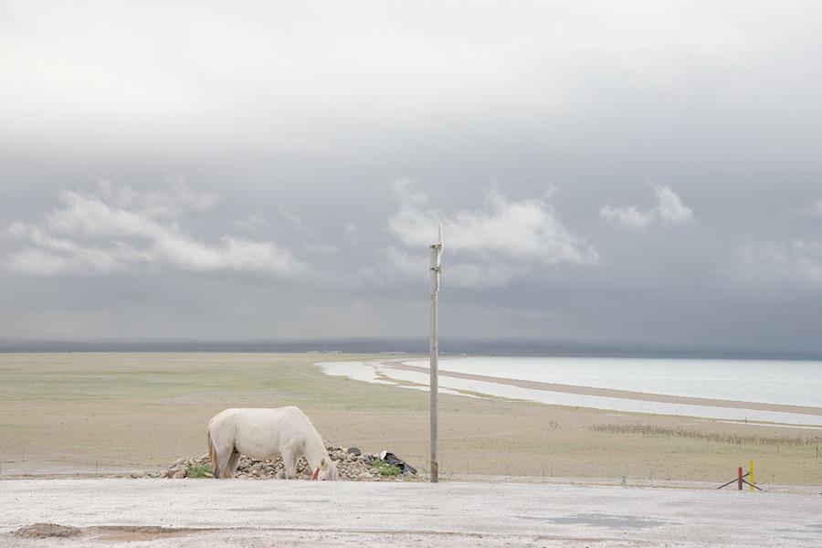 Мир в пастельных тонах на снимках Франчески Поцци