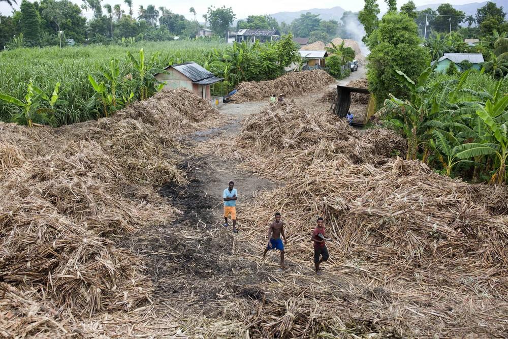 Процесс производства сельского рома на Гаити