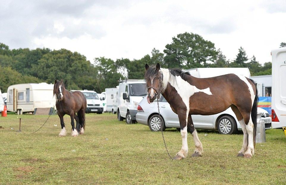 В Великобритании прошла конная ярмарка