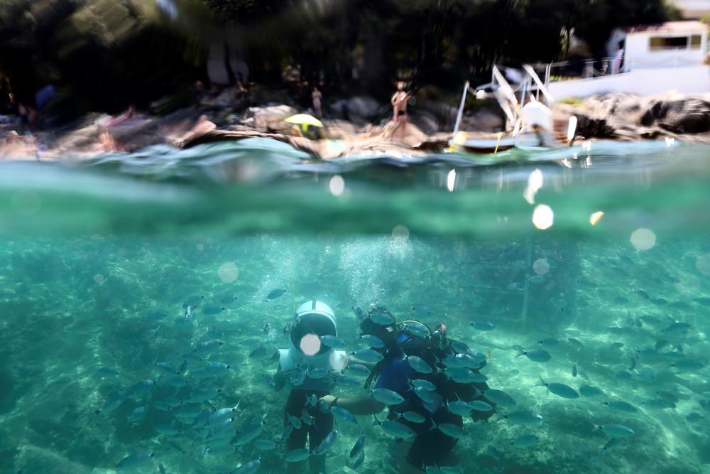 Уникальный подводный парк в Хорватии