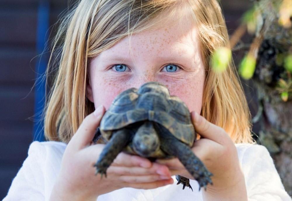 Чтобы осуществить мечту детей, семья переехала жить в зоопарк
