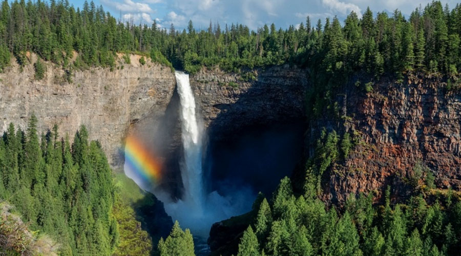 Изумительные чудеса природы