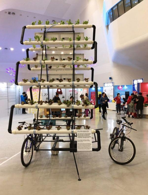 Корейцы собрали велоферму