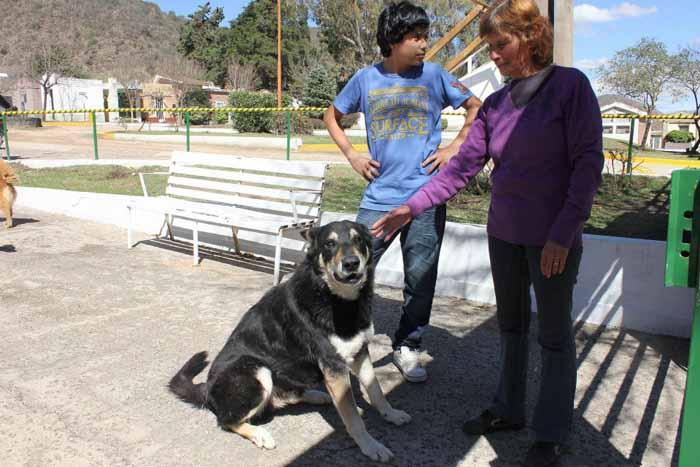 Более 10 лет собака каждый день посещает могилу хозяина