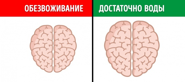12 вещей, которые вредят мозгу
