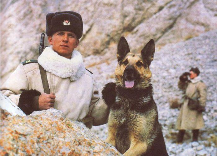 Советские погранвойска