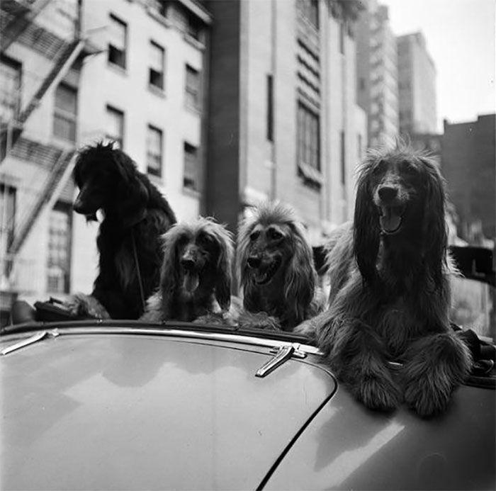 Фотографии Нью-Йорка, сделанные Стэнли Кубриком, когда ему было 17 лет