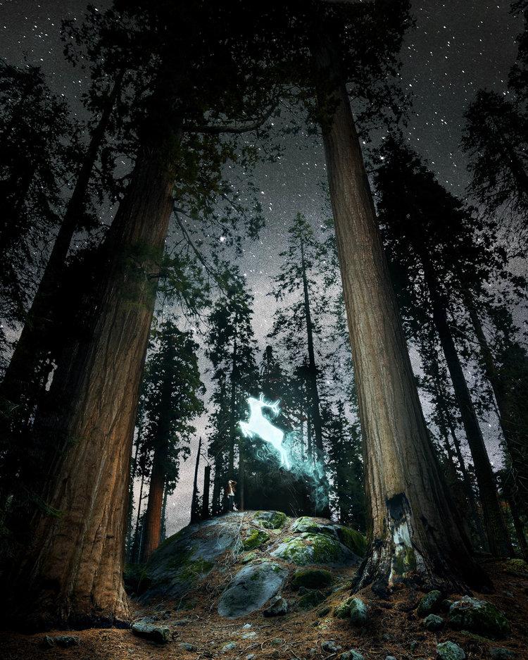 Удивительные фотоманипуляции от Теда Чина