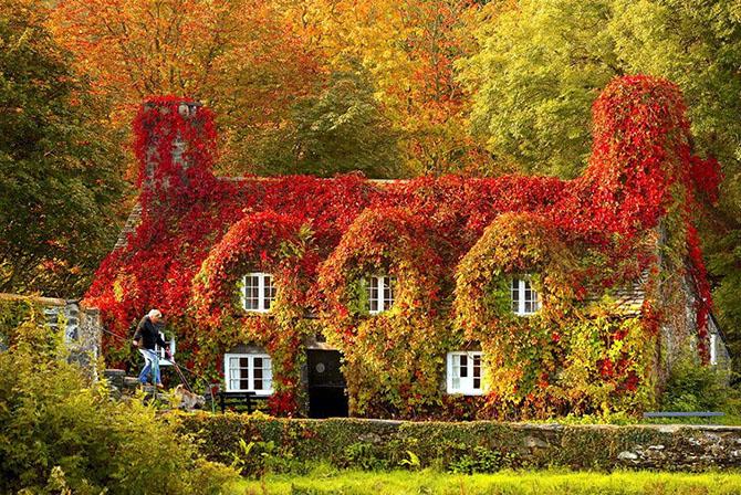 Осенние пейзажи: до и после