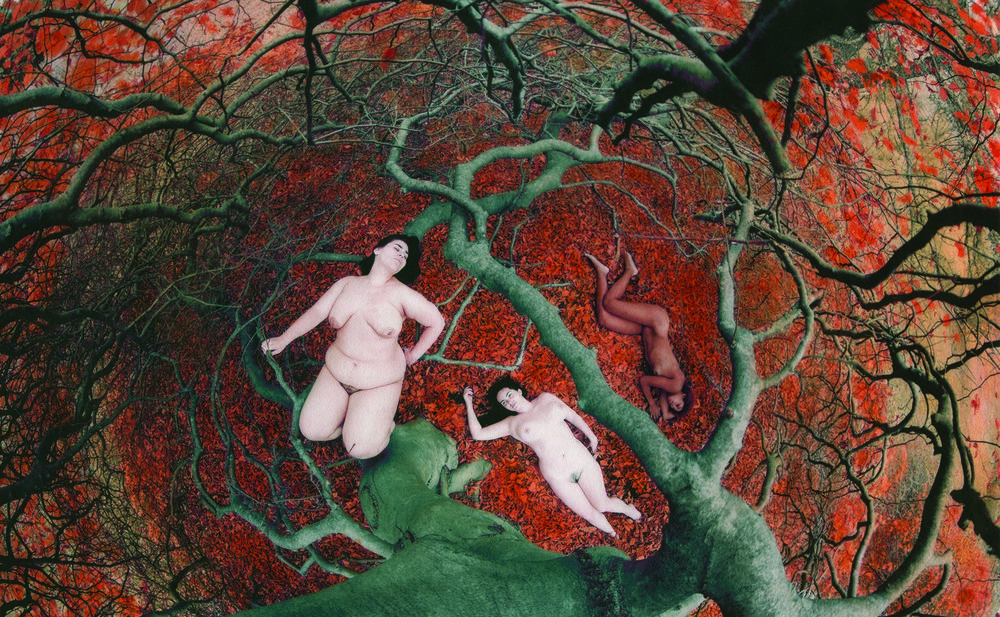 Обнаженные тела в объективе Шэй де Тар